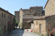 castello di volpaia e ortensie (24)