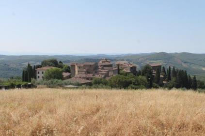 castello di volpaia e ortensie (26)