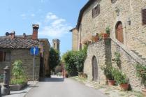 castello di volpaia e ortensie (28)