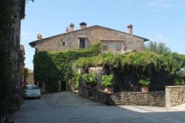 castello di volpaia e ortensie (33)