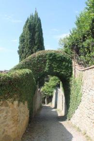castello di volpaia e ortensie (36)