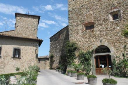 castello di volpaia e ortensie (40)