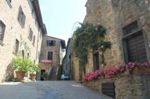 castello di volpaia e ortensie (5)