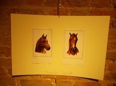 il cavallo degli artisti magazzini del sale siena (2)
