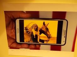 il cavallo degli artisti magazzini del sale siena (29)