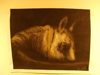il cavallo degli artisti magazzini del sale siena (5)
