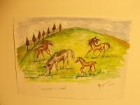 il cavallo degli artisti magazzini del sale siena (6)