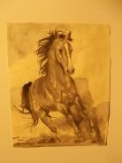 il cavallo degli artisti magazzini del sale siena (7)
