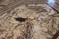 pavimento duomo siena (24)