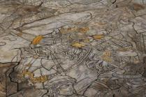pavimento duomo siena (35)