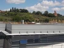 sei toscana siena e erba secca sul tett (1)