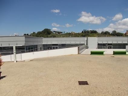 sei toscana siena e erba secca sul tett (12)