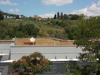 sei toscana siena e erba secca sul tett (2)