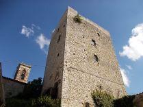 vertine fico sulla torre (5)