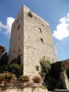 vertine fico sulla torre (6)
