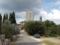 vertine fico sulla torre (8)