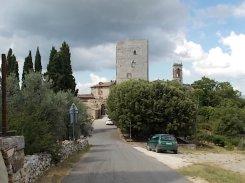vertine fico sulla torre (9)