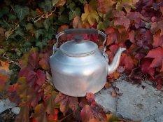 foglie rosse di vite americana e bricco dell'acqua vertine (14)