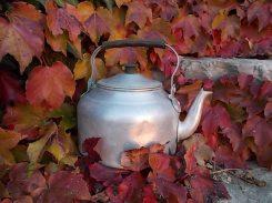 foglie rosse di vite americana e bricco dell'acqua vertine (15)