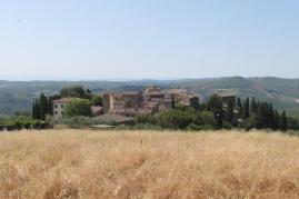 castello-di-volpaia-e-ortensie-26