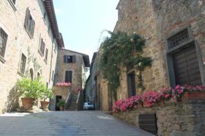 castello-di-volpaia-e-ortensie-5
