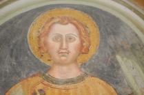 abbazia di sant'antimo montalcino (12)