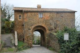 montalcino (4)