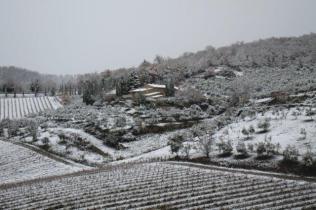 neve nel chianti 13 dicembre 2018 (11)