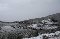 neve nel chianti 13 dicembre 2018 (13)