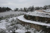 neve nel chianti 13 dicembre 2018 (14)