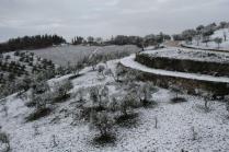 neve nel chianti 13 dicembre 2018 (16)