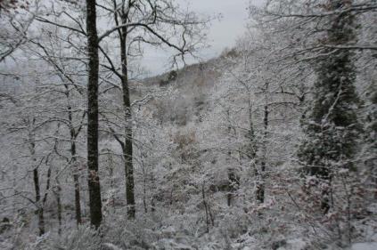 neve nel chianti 13 dicembre 2018 (18)