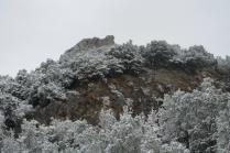 neve nel chianti 13 dicembre 2018 (24)