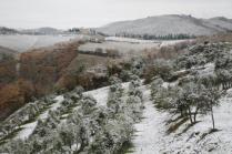 neve nel chianti 13 dicembre 2018 (3)