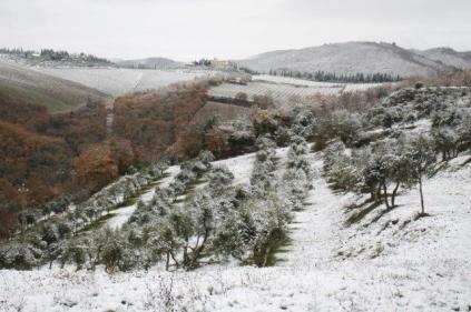 neve nel chianti 13 dicembre 2018 (4)