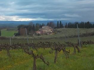 villa-di-pacina-15