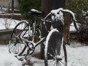 bicicletta di luciano berruti di fabio zacchei e neve (3)
