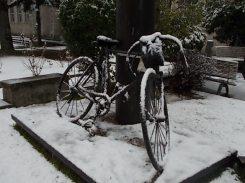 bicicletta di luciano berruti di fabio zacchei e neve (5)
