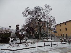 gallo di fabio zacchei e neve (3)