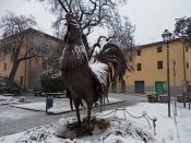 gallo di fabio zacchei e neve (5)