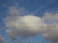 la rete nel cielo della toscana (1)