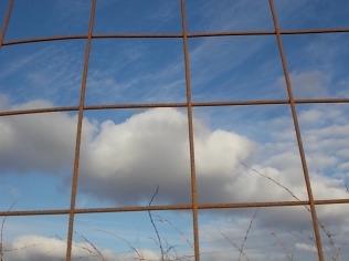 la rete nel cielo della toscana (10)