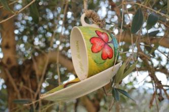 la rosa e le tazze di grano per uccelli di rapolano terme (10)