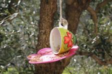 la rosa e le tazze di grano per uccelli di rapolano terme (9)