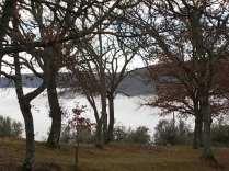 nebbia castello di meleto e sfondo dell'amiata (12)