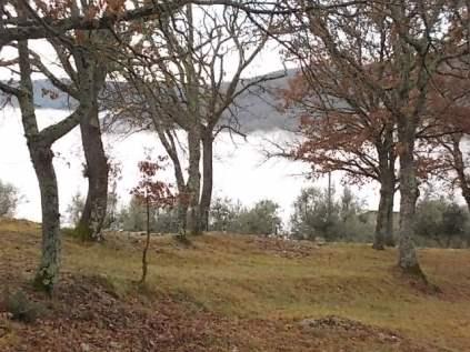 nebbia castello di meleto e sfondo dell'amiata (13)