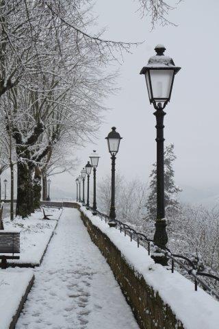 radda e la neve 23 gennaio 2019 (12)