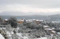 radda e la neve 23 gennaio 2019 (28)