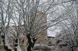 radda e la neve 23 gennaio 2019 (8)