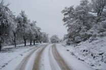 vertine neve 23 gennaio 2019 (11)